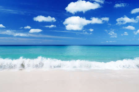Tropical beach. Blue sky and clear water. Stock Photo - 11301242