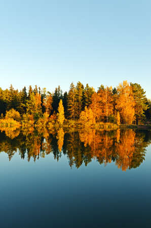 autumn colour: Lake in sunset rays. Fall landscape.
