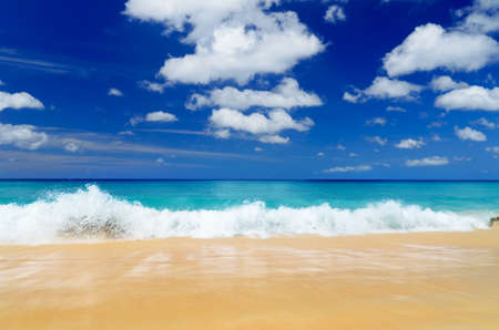 beach scene: Tropical beach. Blue sky and clear water.