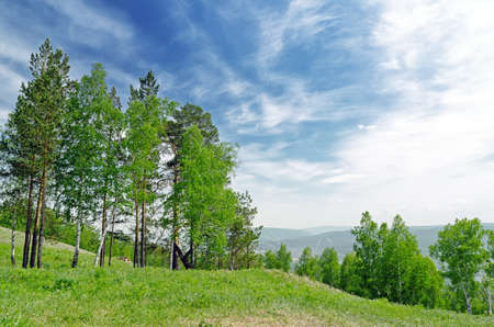 Summer landscape. Green hill and blue sky. photo