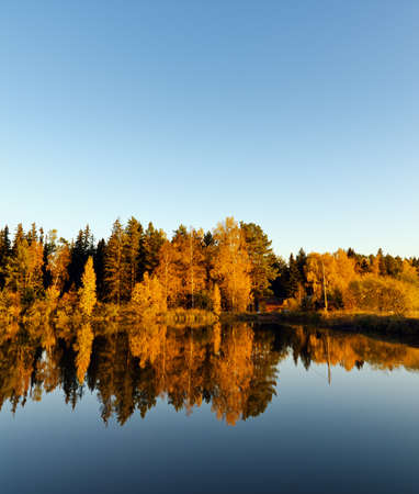 Autumn forest and lake in the fall season. Stock Photo - 14124804