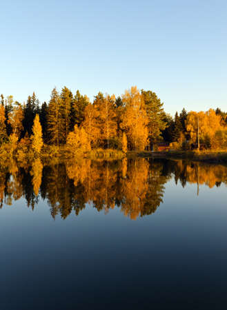 Autumn forest and lake in the fall season  Stock Photo - 14216776