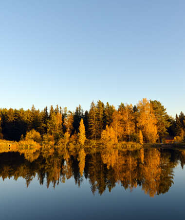 Autumn forest and lake in the fall season. photo