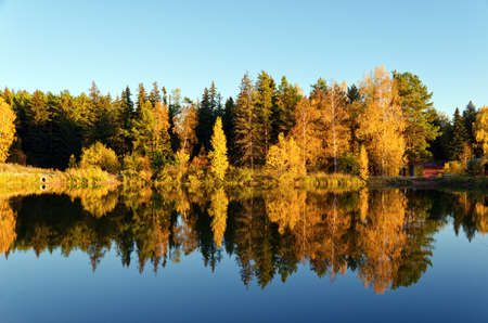 Autumn forest and lake in the fall season Stock Photo - 14264685