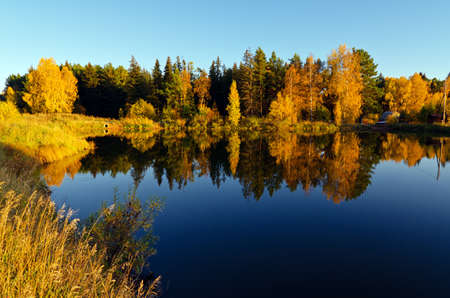 Autumn forest and lake in the fall season Stock Photo - 14475601