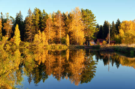 Autumn forest and lake in the fall season. Stock Photo - 14732590