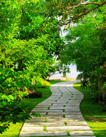 Way to beach in tropical resort  photo