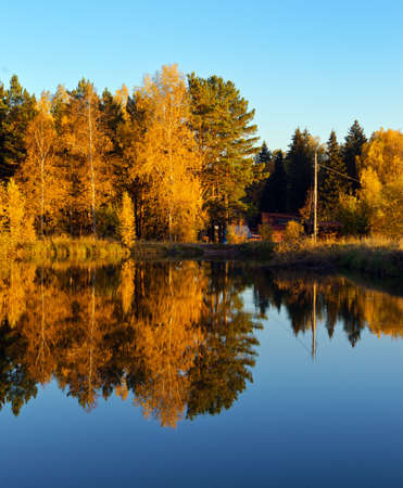 Autumn forest and lake in the fall season Stock Photo - 14868313