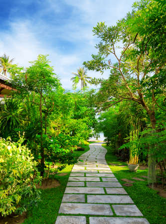 Way to beach in tropical resort. photo