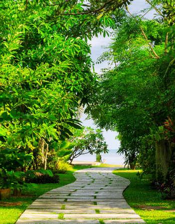 pathways: Way to beach in tropical resort.