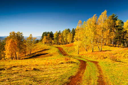Beautiful autumn landscape. Fall season. photo