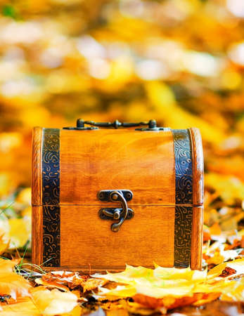 Wooden box in autumn leaves. photo