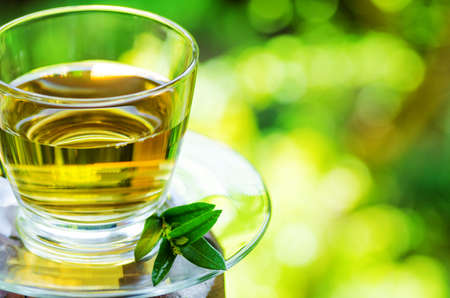 liquid summer: Cup of tea on nature background