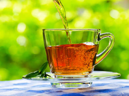 Cup of tea on nature background  photo