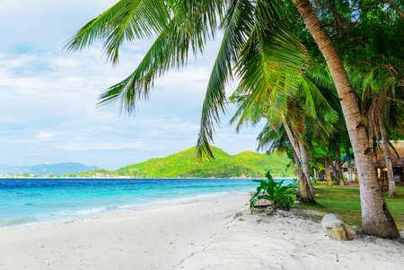 palawan: �rbol Verde sobre la playa de arena blanca Malcapuya isla, Palawan, Filipinas Foto de archivo