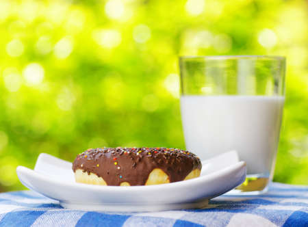 Fresh donut and glass of milk on nature background. photo