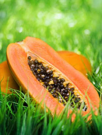 papaya tree: Yellow papaya on green grass. Stock Photo