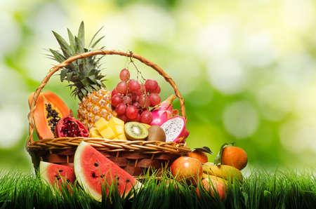 Panier de fruits tropicaux sur l'herbe verte.