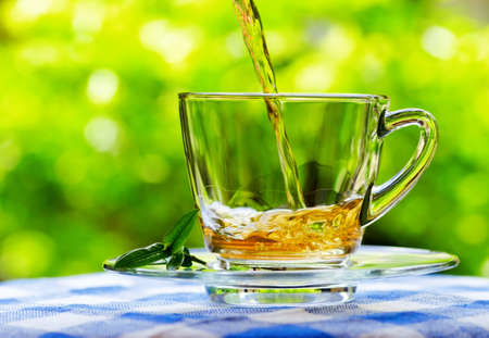Cup of tea on nature background. photo
