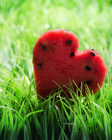 Watermelon heart on green grass. Valentine concept. photo