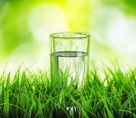 thirst: Glass of water on nature background