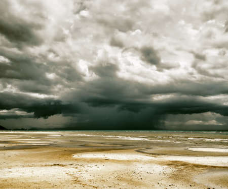 horizon over water: Stormy sky and beach at low tide.
