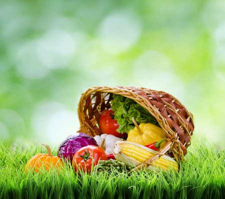 marchew: Świeże warzywa w koszu na zielonej trawie.