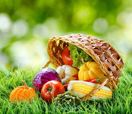 Fresh vegetables in the basket on green grass  photo