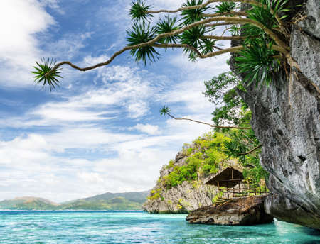 Tropical seashore  Coron, Busuanga island, Palawan province, Philippines  photo