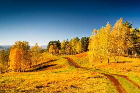 Schöne Landschaft im Herbst. Herbst-Saison.