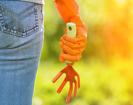 Woman in orange gloves working in the garden. photo
