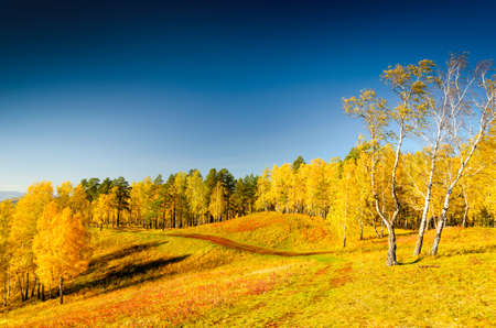 Beautiful autumn landscape. Fall season.