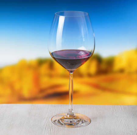 Glass of wine on nature background. photo