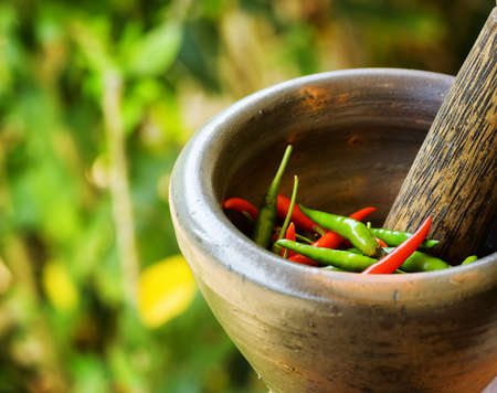 pepper grinder: Red and green pepper in a stone mortar.