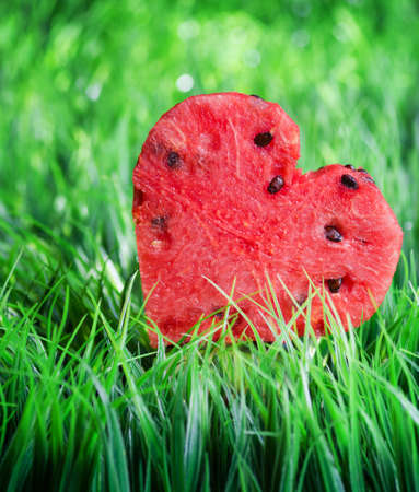Watermelon heart on green grass  Valentine concept  photo
