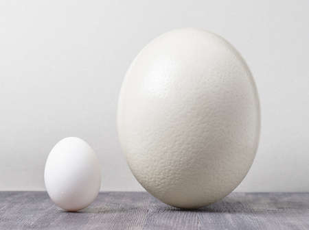 chicken egg: Ostrich egg and chicken egg on a wooden table Stock Photo