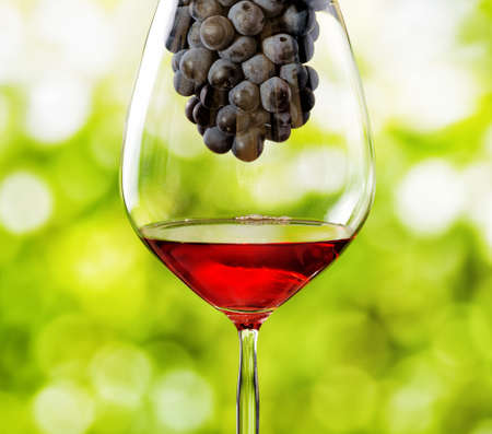 Glass of red wine and bunch of grapes on nature background. photo