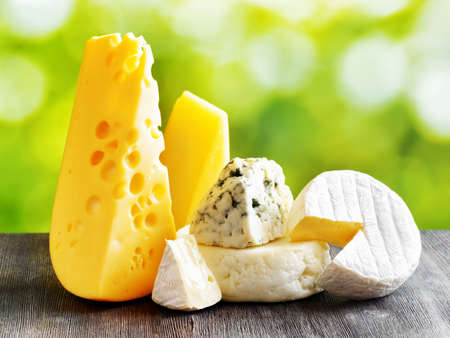 Different types of cheese on a black wooden table and on nature background. Maasdam cheese, Brie, Parmesan cheese, Gouda and blue cheese Roquefort. Organic healthy food rich in calcium and minerals.