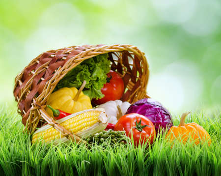 Fresh vegetables falling out of an inverted basket on green grass. Cabbage, chili, asparagus, tomatoes, lettuce and pumpkins on nature background. Organic healthy food rich in minerals and vitamins.