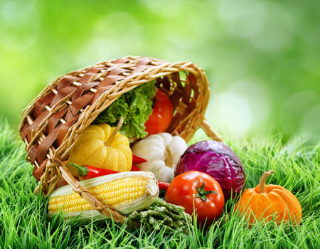 and organic: Fresh vegetables falling out of a basket on green grass. Cabbage, chili, asparagus, tomatoes, lettuce and pumpkins on nature background. Healthy food rich in vitamins. Product of organic farming.