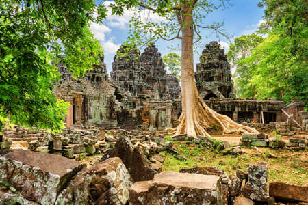nestled: Mysterious ruins of Ta Prohm temple nestled among rainforest in ancient Angkor, Siem Reap, Cambodia. Angkor is a popular tourist attraction.