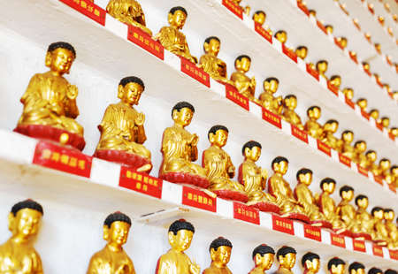 monastery: Different small golden Buddha statues inside the temple of the Ten Thousand Buddhas Monastery in Hong Kong. Hong Kong is popular tourist destination of Asia.