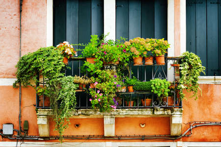 green building: Scenic balcony of old house decorated with flowers in pots, Venice, Italy. Venice is a popular tourist destination of Europe.
