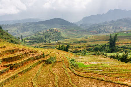 lien: View of rice terraces at highlands of Sapa District, Lao Cai Province, Vietnam. Sa Pa is a popular tourist destination of Asia. The Hoang Lien Mountains are visible in background. Stock Photo