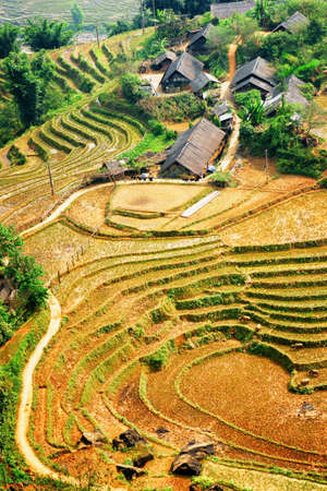 lien: Top view of rice terraces and roofs of village houses among green trees in the Hoang Lien Mountains of Sapa District, Lao Cai Province, Vietnam. Sa Pa is a popular tourist destination of Asia. Stock Photo