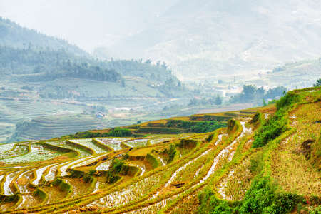 destination scenic: Scenic view of mirror rice terraces filled with water at highlands. Sapa District, Lao Cai Province, Vietnam. Sa Pa is a popular tourist destination of Asia. Stock Photo