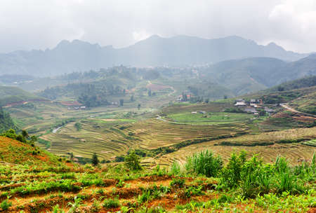 lien: Top view of rice terraces at highlands of Sapa District, Lao Cai Province, Vietnam. Sa Pa is a popular tourist destination of Asia. The Hoang Lien Mountains and stormy sky are visible in background.