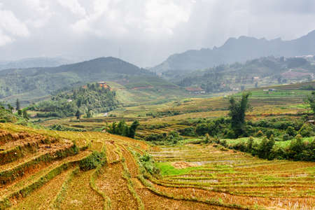 lien: Rice terraces at highlands of Sapa District, Lao Cai Province, Vietnam. Sa Pa is a popular tourist destination of Asia. The Hoang Lien Mountains are visible in background.