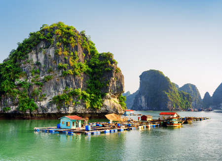 Floating fishing village in the Halong Bay (Descending Dragon Bay) at the Gulf of Tonkin of the South China Sea, Vietnam. Landscape formed by karst towers-isles in various sizes and shapes.