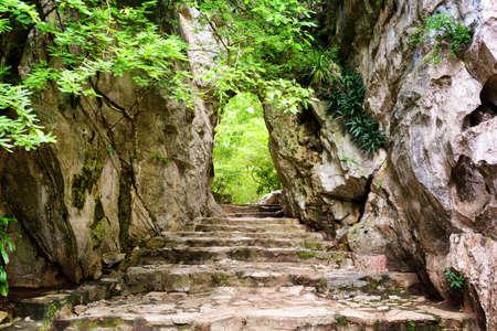 Malerische Steintreppe führt in den Felsen unter grünen Blättern auf Tor auf. Weg zum rätselhafte Tropenhölzer. Wald in der Sommersaison. Standard-Bild